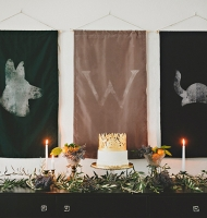 Game of Thrones Baby Shower